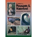 A guide to pheasants & waterfowl