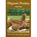 Organic Poultry / Katie Thear