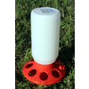 Poultry Feeder 1kg [Colour: Red]